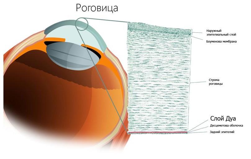 Восстановление роговицы глаза