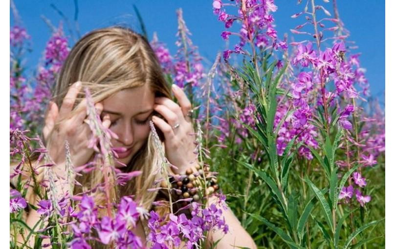 Сила молодости растений на службе здоровья человека